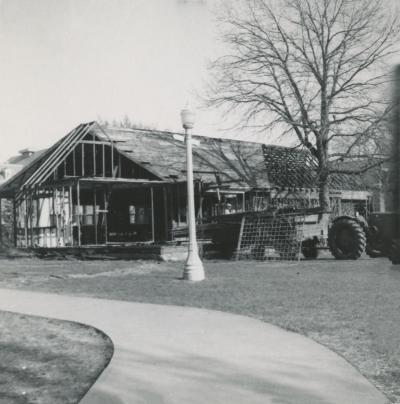 Demolition of Domestic Science Building; oak on right, c. 1954.