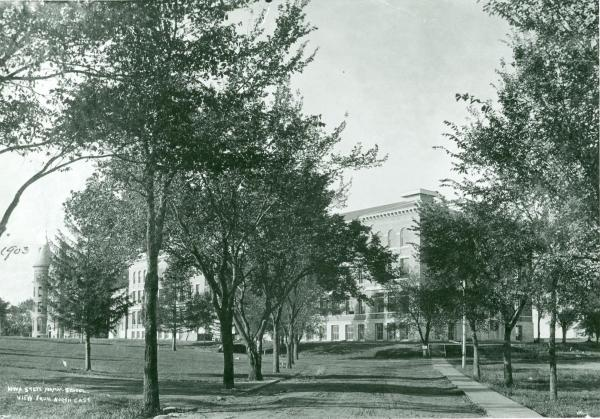 The same shaded campus pathway leading to Lang Hall in the 1900s...