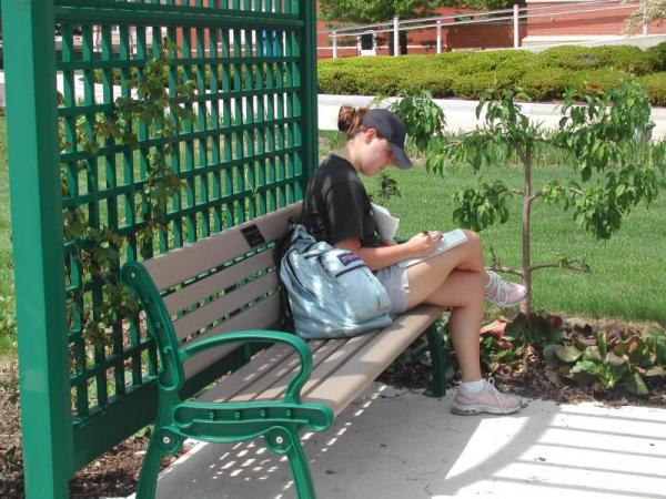 Studying in the memorial garden