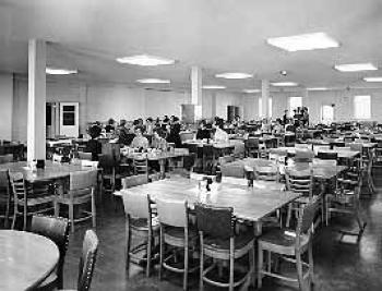 Campbell dining