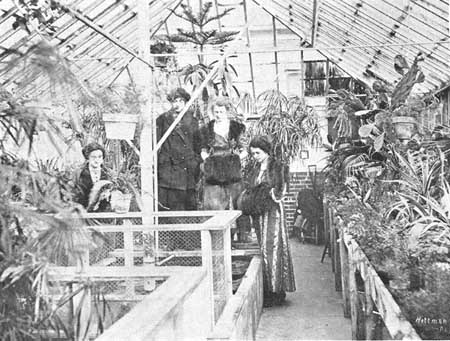 Greenhouse students