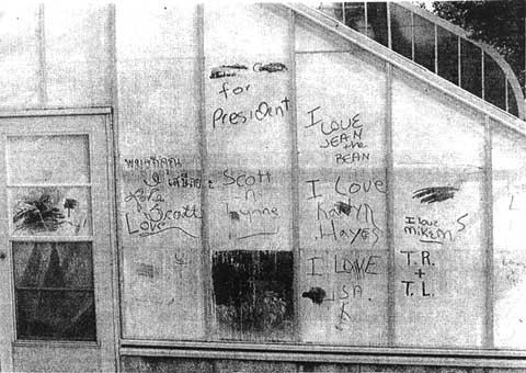 Greenhouse graffiti